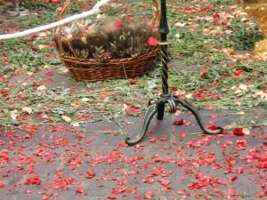 Frisches Gras und Rosenblätter auf der Strasse beim Fronleichnasmszug in Granada