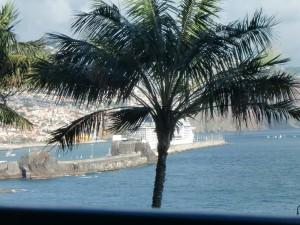 Blick auf den Hafen von Funchal, dem Zentrum des Weinhandels auf Madeira