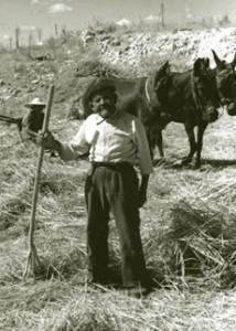 Ein spanischer Bauer am Beginn des 20. Jahrh.